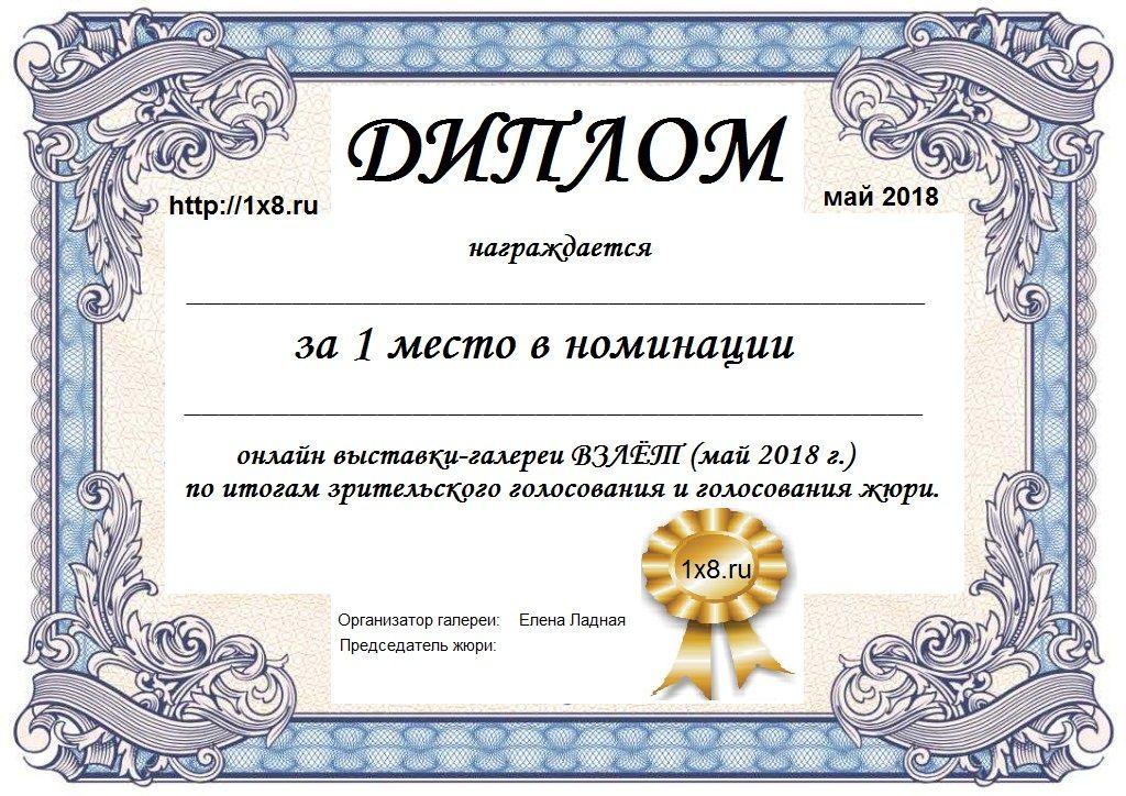 диплом участника галереи ВЗЛЕТ